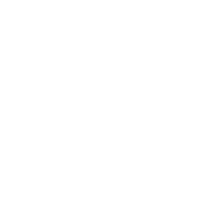 Rising_Voices_Logo_White_Sq